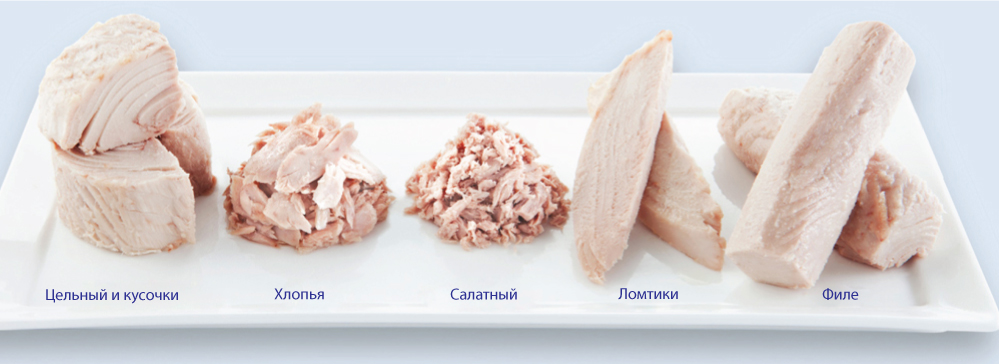 где можно купить fish hungry продукт